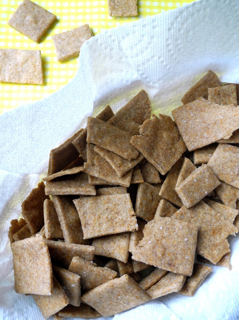 homemade wheat thins 2 -- Reini Days