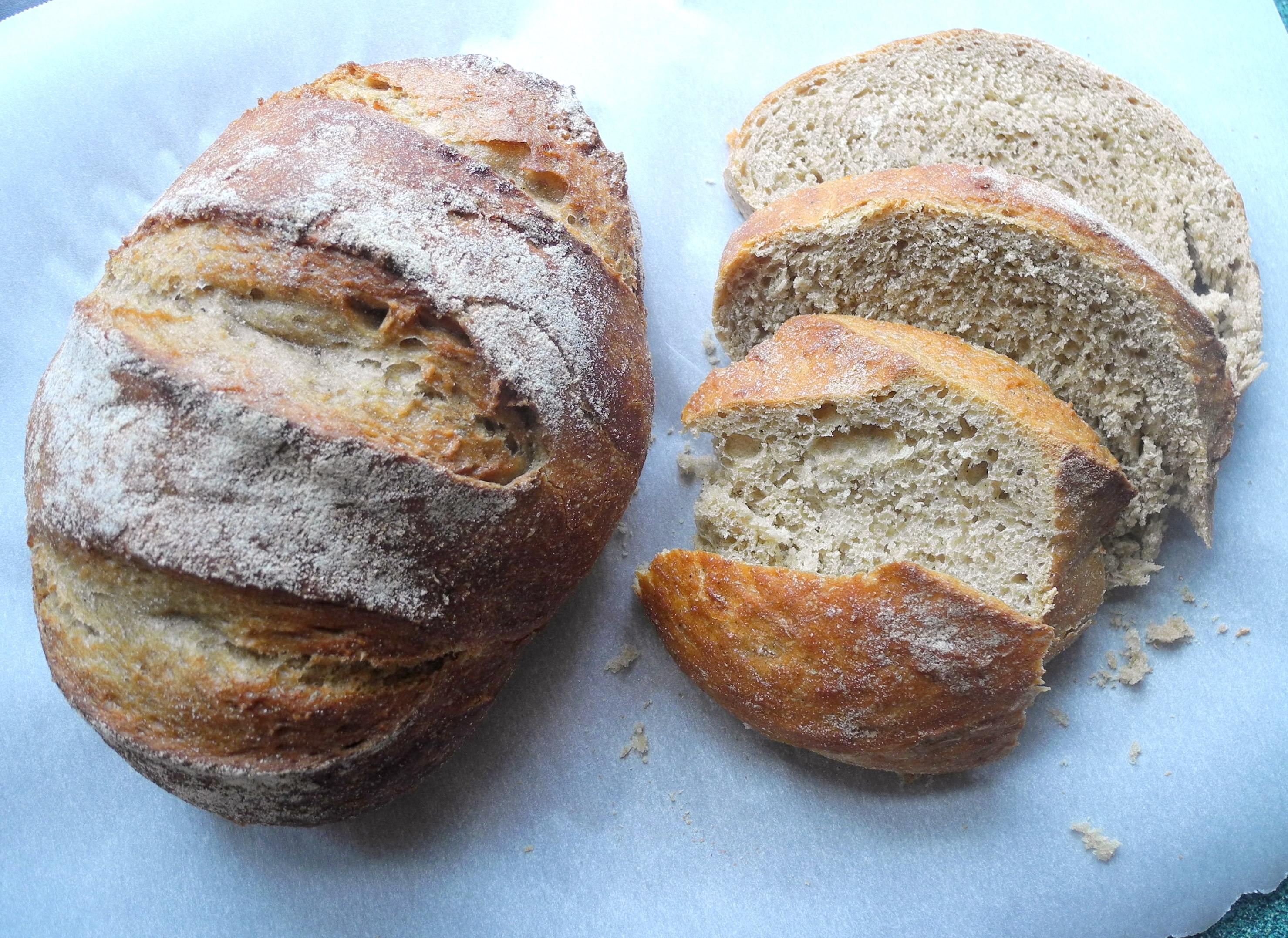 No-Knead Wheat Bread-- Reini Days